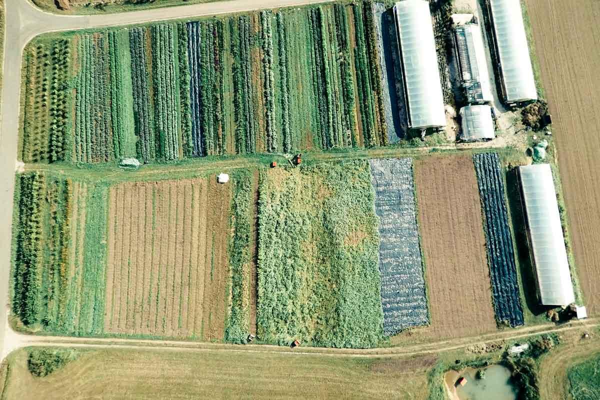 Luftbild eines Market Garden in Deutschland